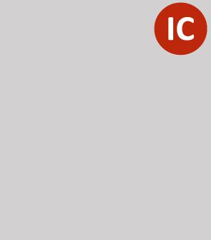 it-consult_logo